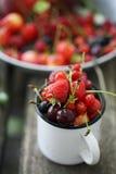 Garden organic berries Stock Image