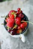 Garden organic berries Royalty Free Stock Photography