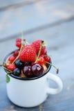 Garden organic berries Stock Photos