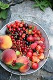 Garden organic berries Stock Photo