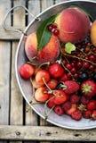 Garden organic berries Royalty Free Stock Photos