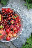 Garden organic berries Royalty Free Stock Images