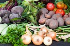 Garden organic vegetables, field autumn crop stock photo