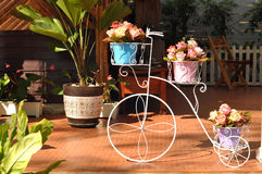 Garden ornament. Beautiful spring blossom in the coffe shop Stock Photography