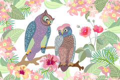 Garden and owls. royalty free illustration