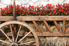 Garden Ox Cart Stock Image