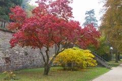 Garden of the Palatinate, Heidelberg Castle, Germany royalty free stock image