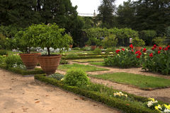 The  Garden of the Palazzo Doria Pamphili in Genoa Italy Stock Photos