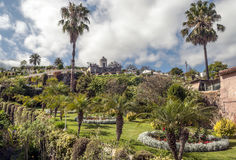 Garden with palm trees. And flowers on a cloudy day, is located on the Orotava in Tenerife Royalty Free Stock Photography