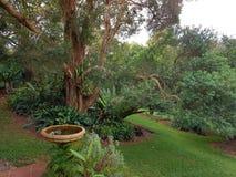 Garden paradise. Lush back yard Royalty Free Stock Image