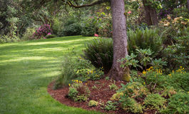 Garden Park. Dappled sunlight decorates the lawn of shady park filled with native plants in Eugene Oregon Royalty Free Stock Photo