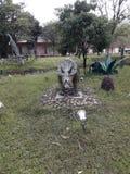 Garden park stock photo