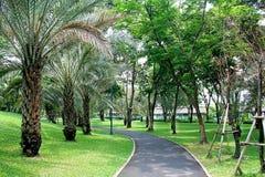 Garden. Park, one of Bangkok Thailand Stock Photography