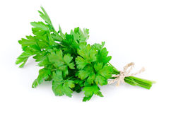 Garden parsley Royalty Free Stock Photo