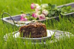 Garden party. Chocolate cake on wicker tray, on green fresh gras Stock Photos