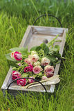 Garden party decor. Bouquet of pink roses Royalty Free Stock Photo