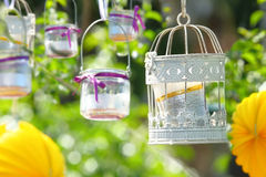 Garden party decoration hanging on branch Stock Photo