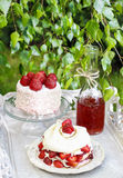 Garden party: meringue with strawberries Stock Photography