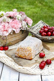 Garden party table: coconut cake, Stock Images