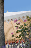 Garden party tent Stock Photography