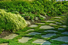 Garden path. A path of stones in a garden Stock Images