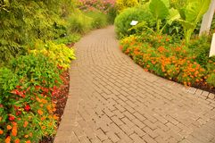 Garden path. A colorful garden path in the evening sunlight Stock Photo