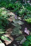 Garden Path. Stone path through a verdant garden Stock Photos