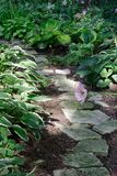Garden Path. Stone path through a verdant garden Royalty Free Stock Image