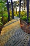 Garden path. During evening sunset royalty free stock photos
