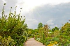 Garden path. Stock Photo