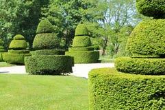 A garden path. A verdant garden and path Stock Photos