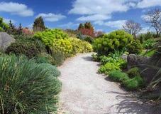 Garden path. Rock garden, spring, clouds on the sky Royalty Free Stock Photos