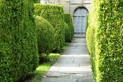 Garden Path stock photo