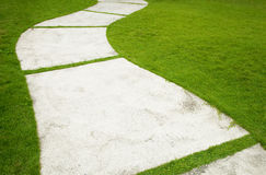 Garden Path. With grass growing up between the stones royalty free stock photos