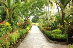 Free Garden Path Stock Photos - 25402173