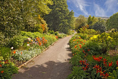 Garden Path. Late Spring mixed borders allongside a path in the Dorothy Clive garden in Shropshire, England Royalty Free Stock Photos