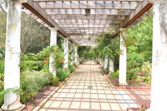 Garden path. With pillars and wooden planks stock photography