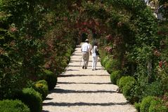 A garden path stock photos