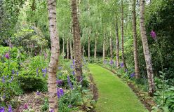 Garden Path Stock Images
