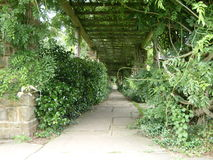Garden path Royalty Free Stock Images