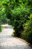 Garden path. Picture of the garden path Stock Photo