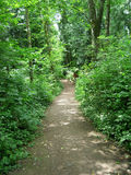 Garden Path. Winding path in a peaceful nature walk Stock Photography