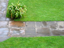 Garden Path. A garden path and lawn, on a wet day Stock Image