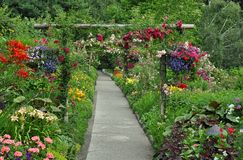 Summer garden path Stock Image