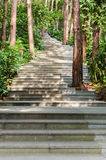 Garden path. Curved path in a peace garden stock images