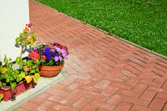 Garden path, flowers, grass background Stock Photo