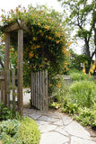 Garden Path and Gate. A healthy honeysuckle vine greets visitors at the entry gate to a beautiful country garden Stock Images
