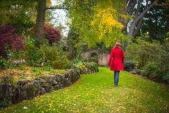 The garden path Stock Images