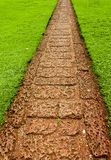 Garden path with grass growing up between the stones Royalty Free Stock Photos