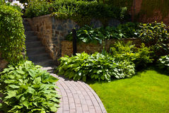 Garden path with grass royalty free stock photography
